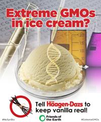 Synbio Vanilla ice cream