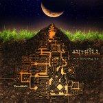 anthill1